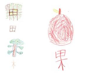 chinese-果-fruit